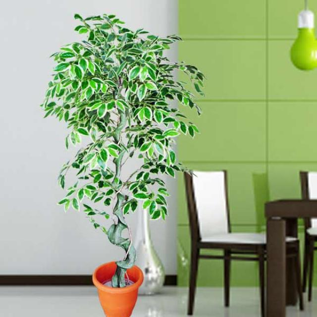artificial plants & artificial plants singapore - artificial plants
