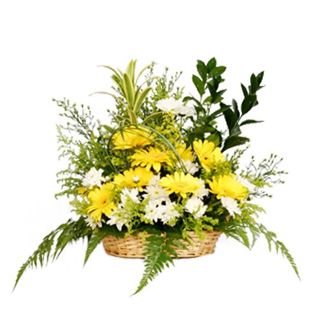 Yellow Gerbera basket arrangement