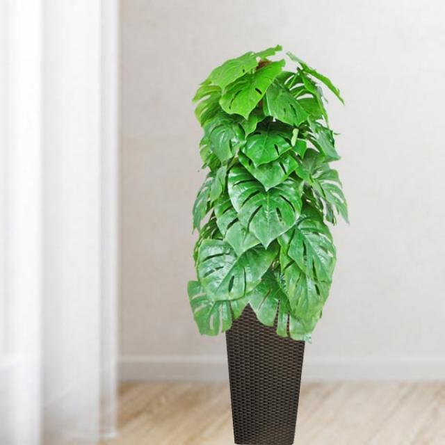 Artificial Monstera Plant In Planter Pot with wheels ToTal Height 138cm