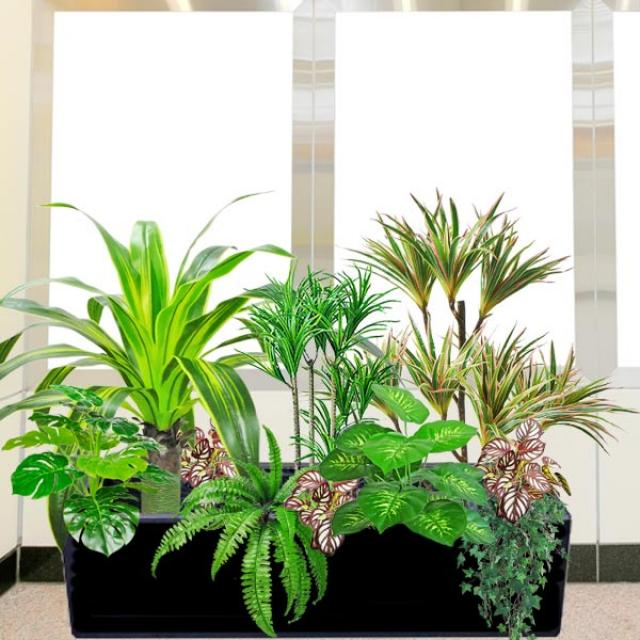 Artificial Schefflera Plants & Money Plant 60cm Height