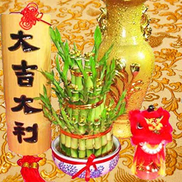 3 layer lucky Bamboo special decorated with Gold Ingot