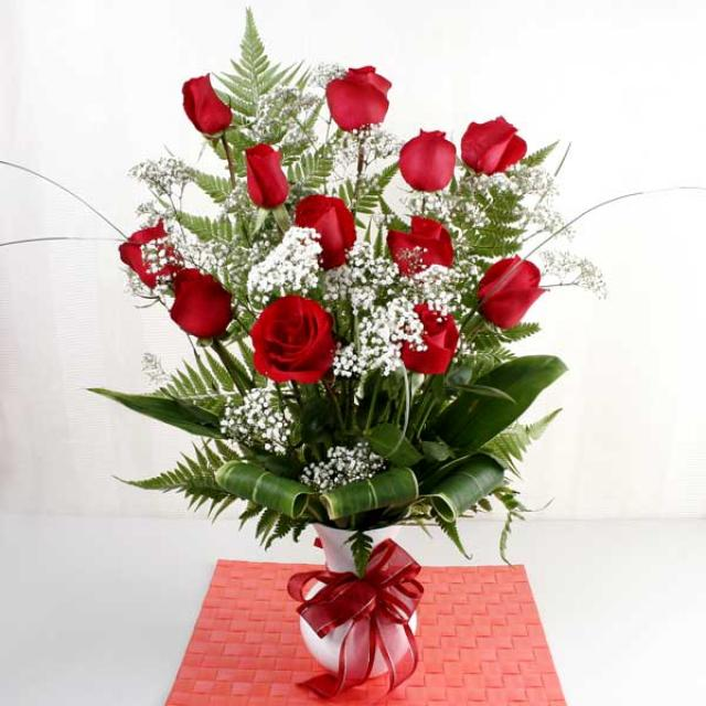 red and white roses background. White+and+red+roses+images