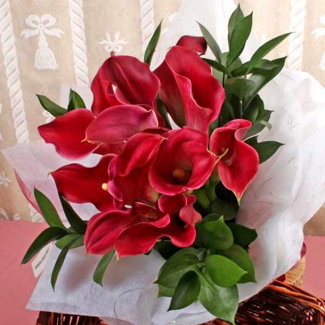 12 Dark Red Calla Lilies Hand Bouquet