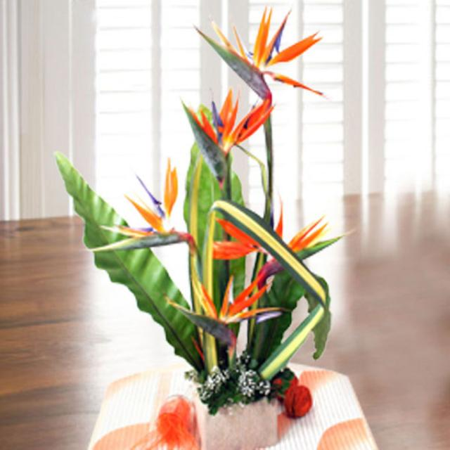 5 Bird of paradise Table arrangement