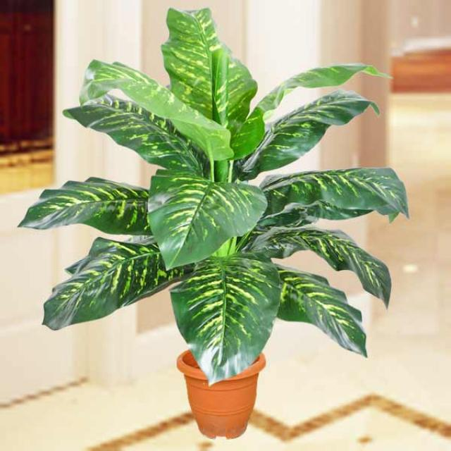 Artificial 4 Feet Dieffenbachia Plants - 15 Leaves
