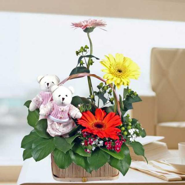 Couple Bear & 3 Mixed Gerbera Basket Arrangement