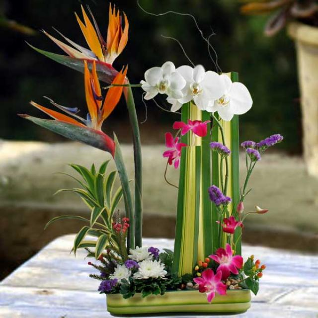 Orchids & Bird of paradise ikebana Arrangement