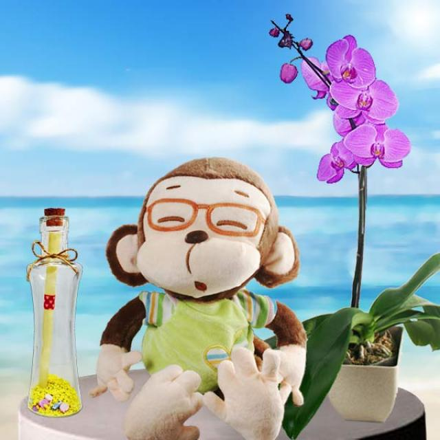 Message in a Bottle, Monkey & Orchid Plant