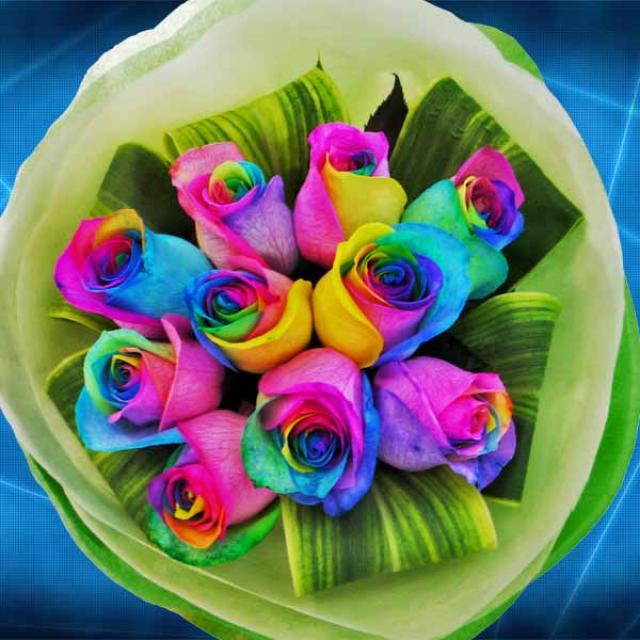 Rainbow roses Hand Bouquet Delivery