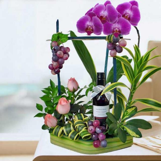Red Wine & Phalaenopsis Orchid