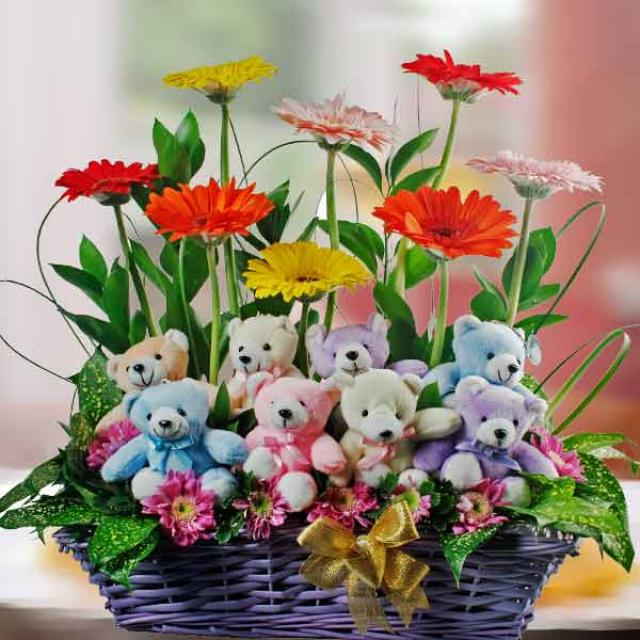 8 Gerberas & 8 Bears in Basket Arrangement
