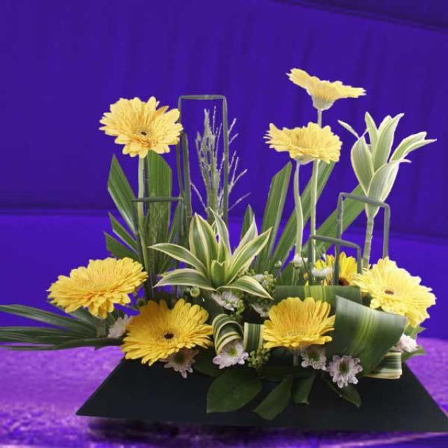 Gerbera Flowers Arrangement Delivery
