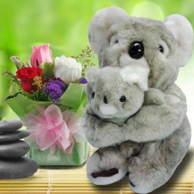 Koala Bear 25cm & 3 Mixed Roses Standing Bouquet