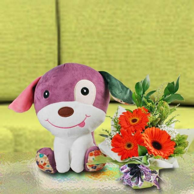 30cm Plush Toy Puppy ( Choose One ) & Gerbera Bouquet