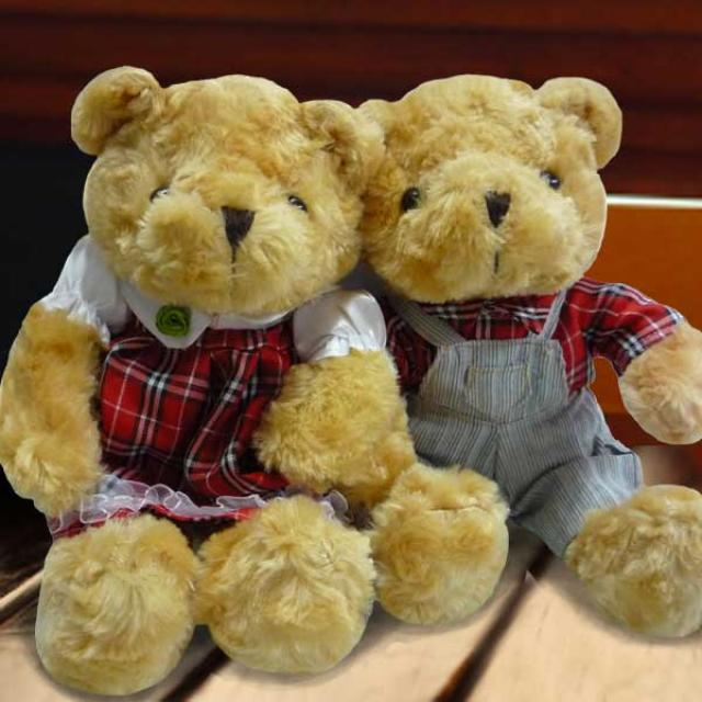Add-on 20cm Couple Bear