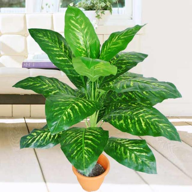 Artificial 4 Feet Dieffenbachia Plants