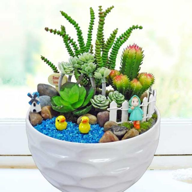 Artificial Mini Cactus Garden