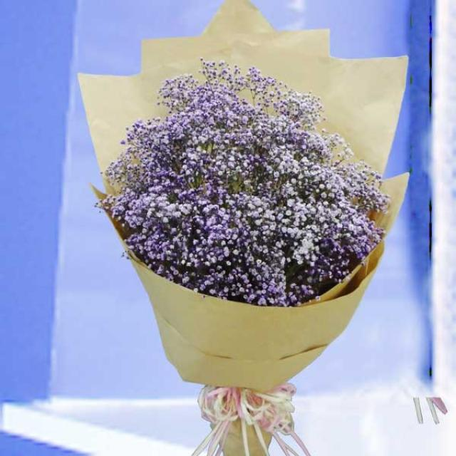 Purple Baby\\\'s-breath ( Gypsophila ) Hand Bouquet.