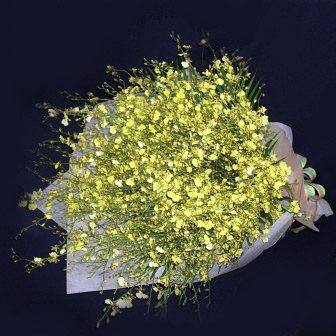 Golden shower Orchid Hand bouquet