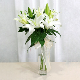 Casablanca Lily With Glass Vase