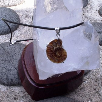 Ammonite Pendant With Leather Necklace