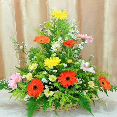 Mixed Gerbera Basket Arrangement