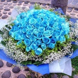 99 Blue Roses bouquet (kindly order 2 days Advance or Call Us)