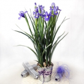10 Blue iris table arrangement--Kindly order 2 days in advance