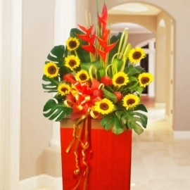 10 Sunflowers Arrangement in Box Stand