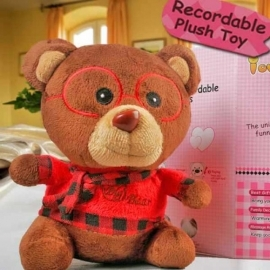 Add-on 6 inches Bear with Voice Recorder