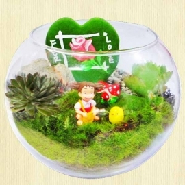 Mini Cactus & Moss Garden in Glass Bowl 11cm Height